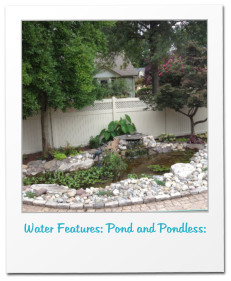 Water Features: Pond and Pondless:
