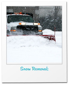 Snow Removal: